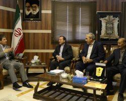 دکتر شهریاری: ورزشهای همگانی باید در بین اقشار مختلف مردم نهادینه شود