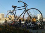 سومين همايش بزرگ تركيبي پياده روي و دوچرخه سواري در مياندوآب برگزار شد